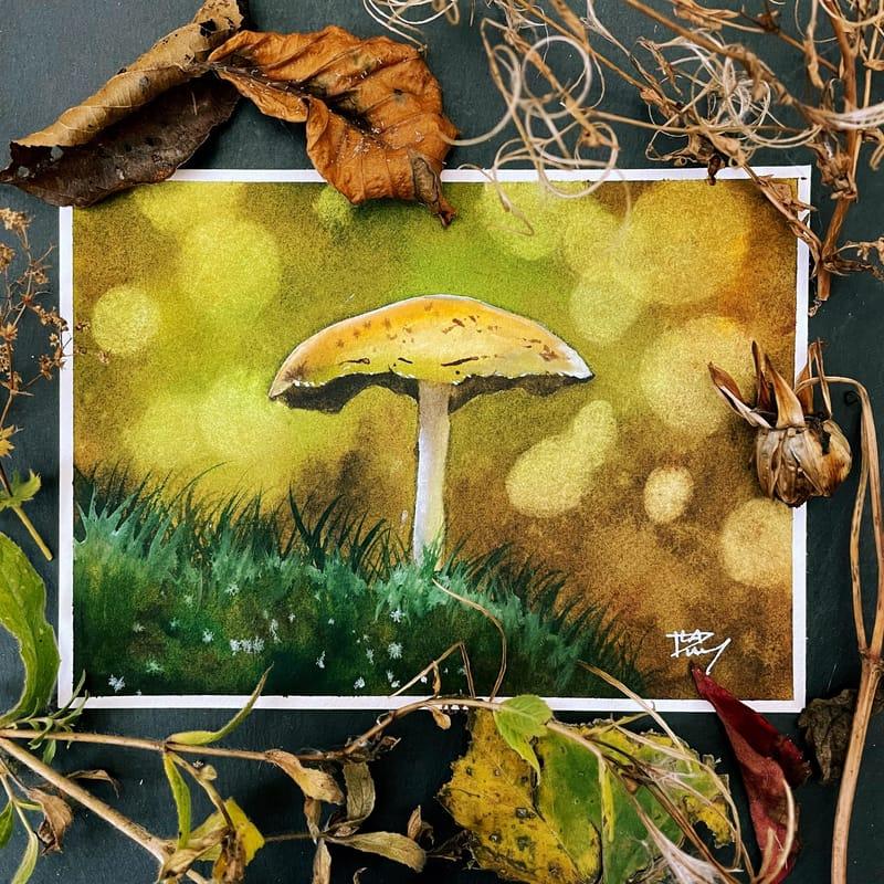 Charming bokeh mushroom