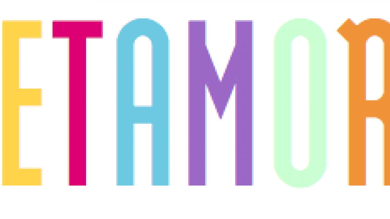 Metamora - The Online Pop-up Market - student project