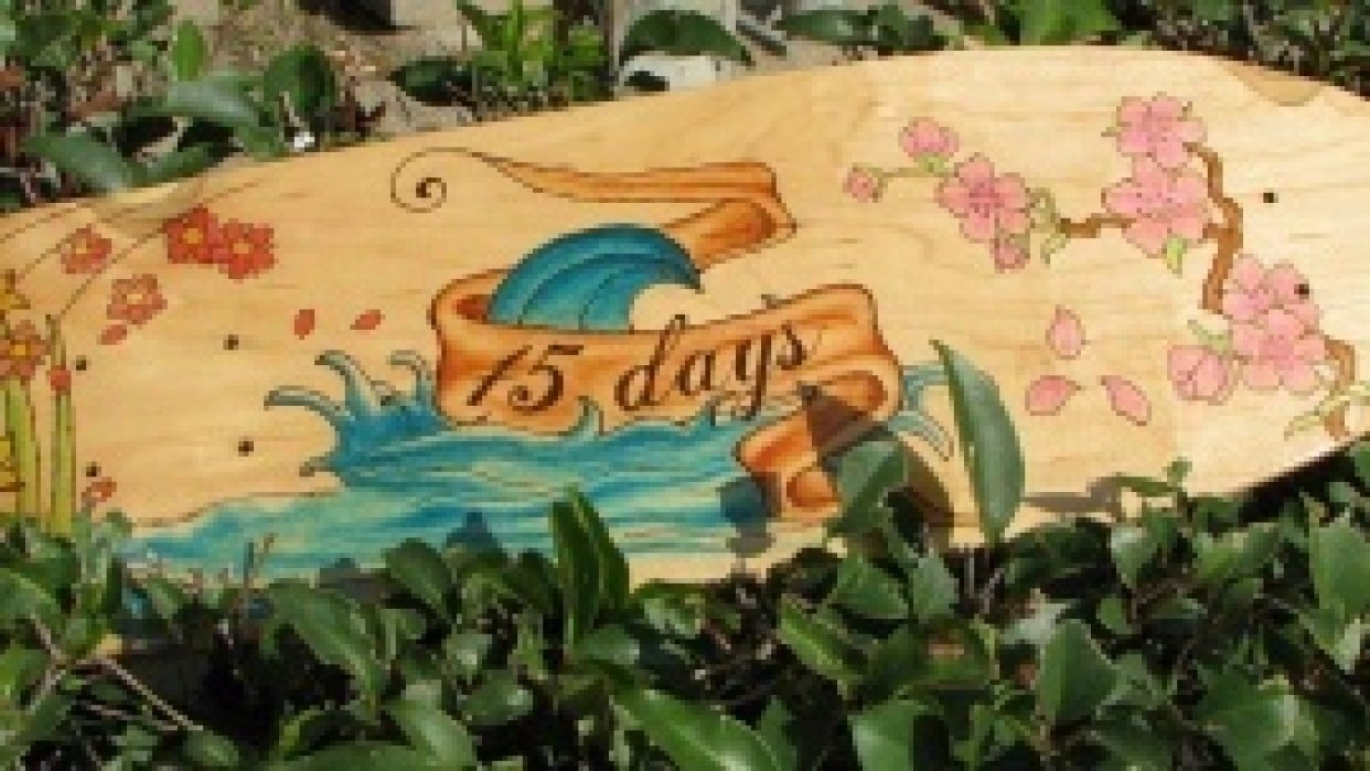 15 days boards - student project