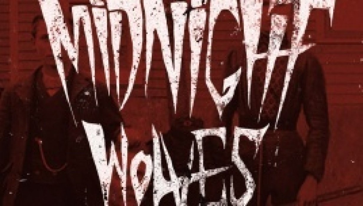 Midnight Wolves - student project