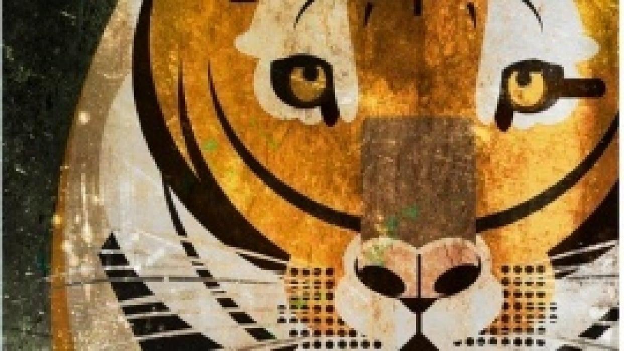 Tigerrrr - student project
