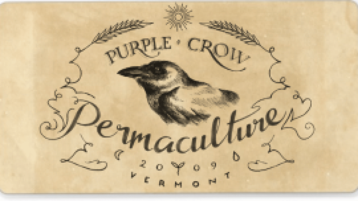 Purple Crow Permaculture - student project