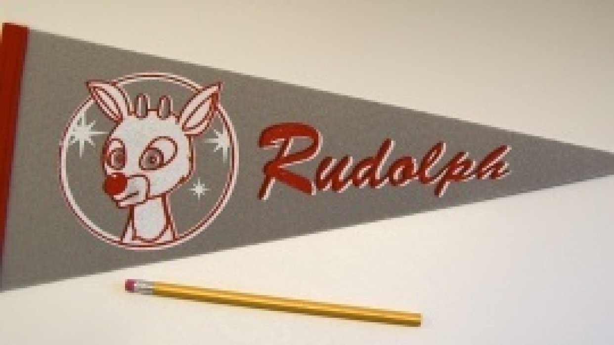 hook and loop pennants - student project