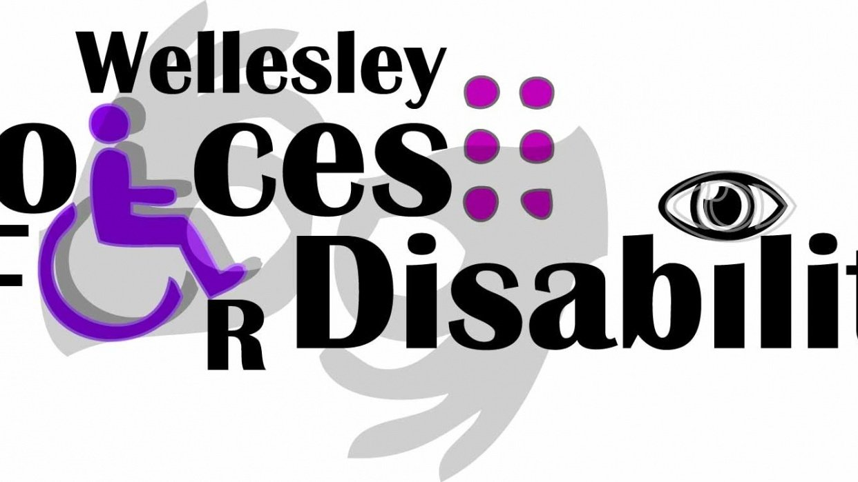 Wellesley Voices for Disability  - student project