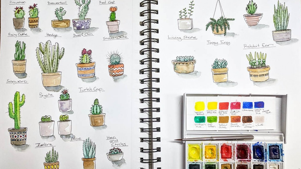 Cacti and watercolour practice - student project