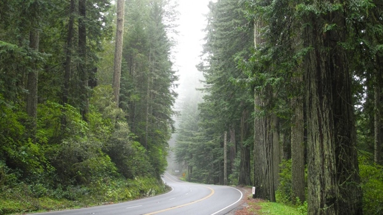 Northern California's Highway 101 - student project