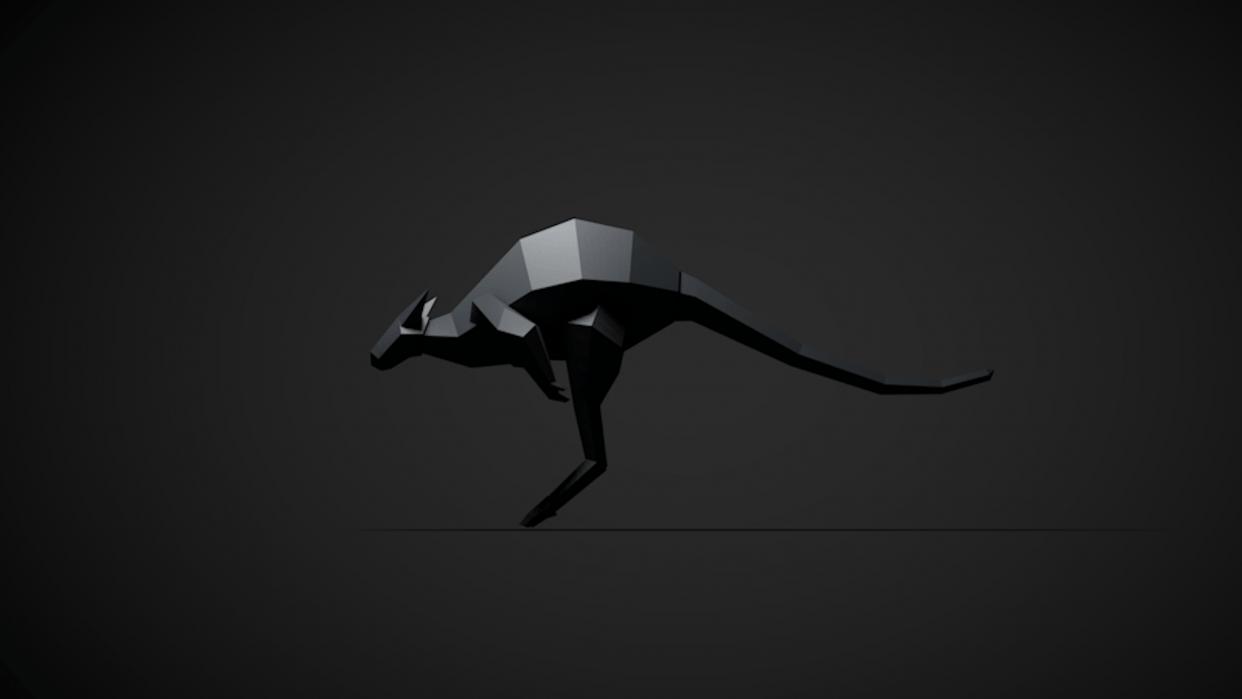 kangaroo - student project