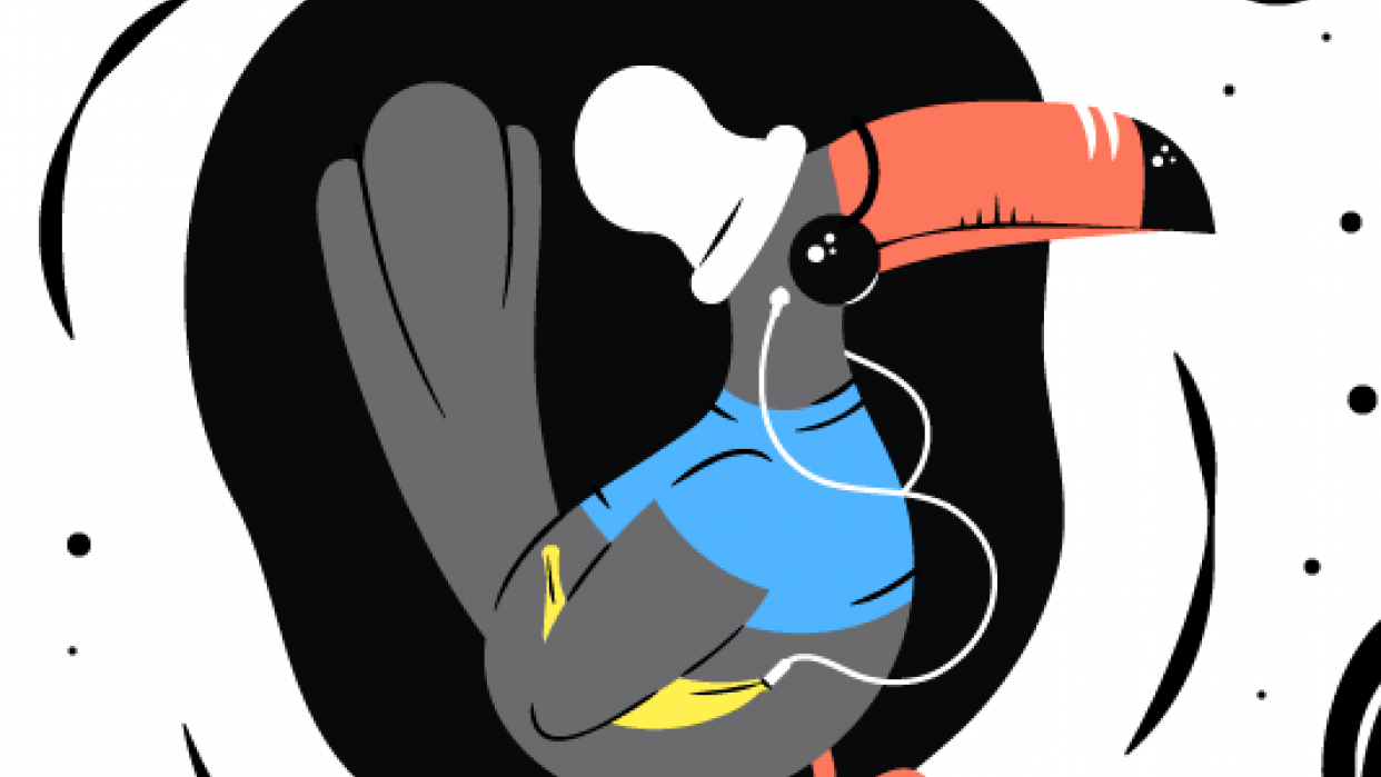Hipster Toucan - student project