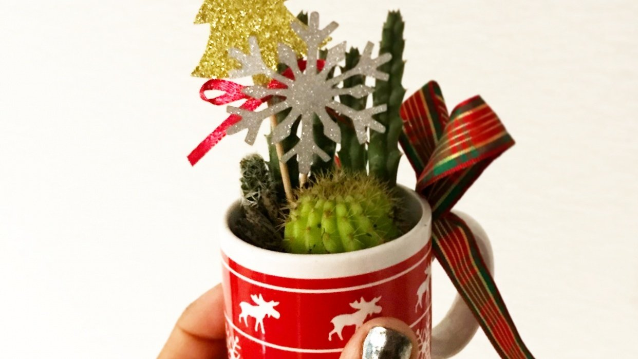 Succulents in a cup - student project