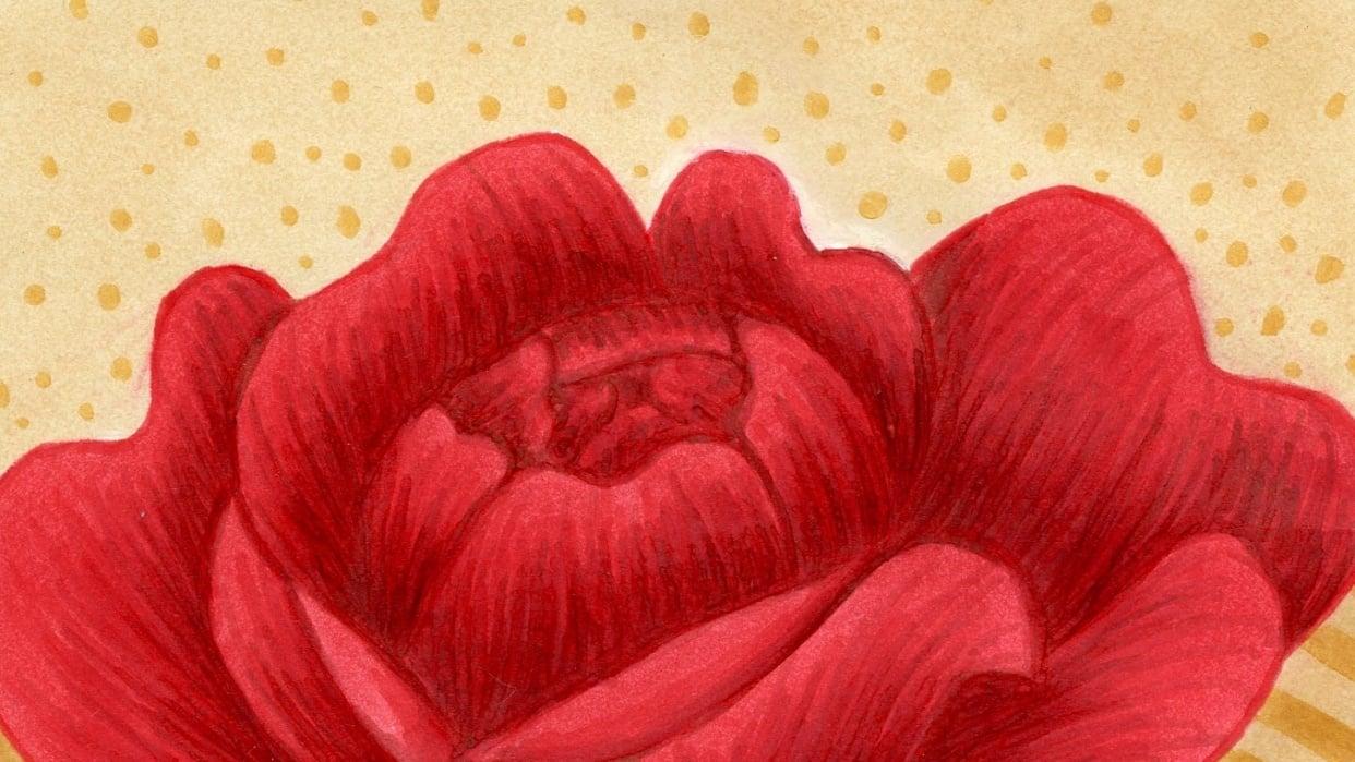 Red velvet rose - student project