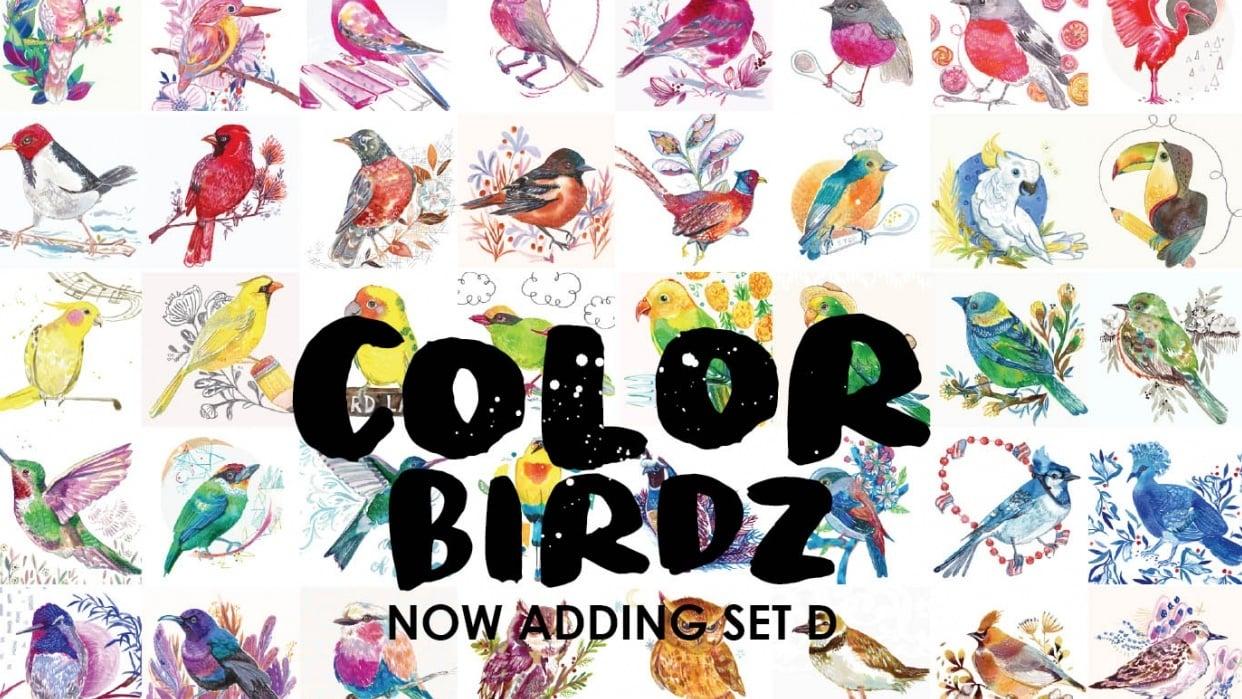More Color Birdz - student project