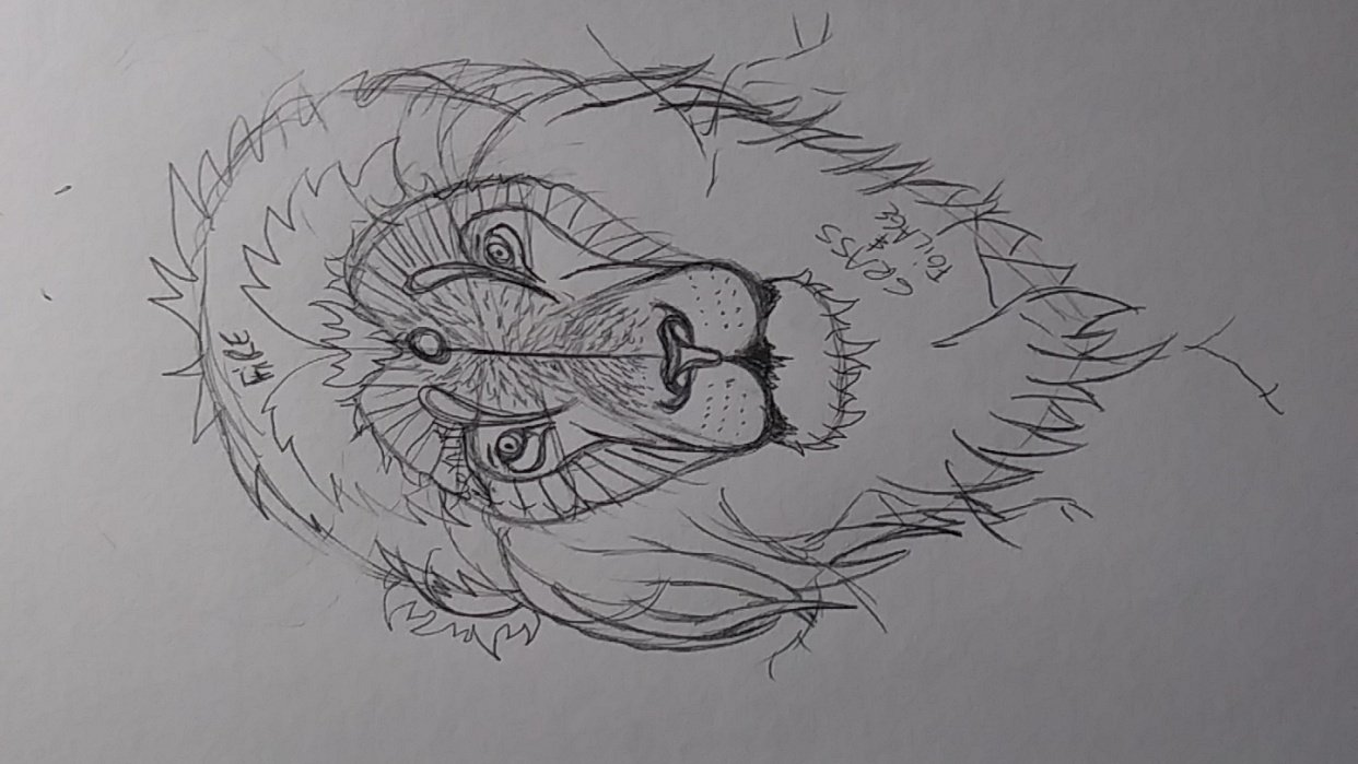 Stylized Lion Part 1 - student project