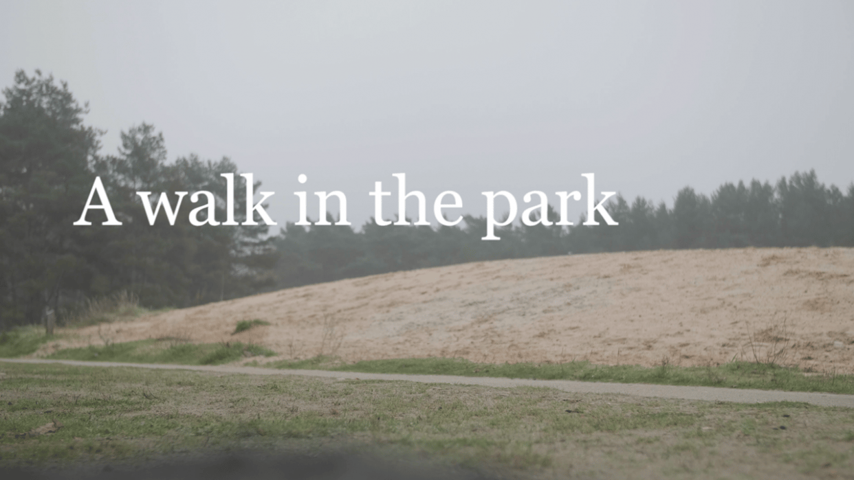 A walk in the park - student project