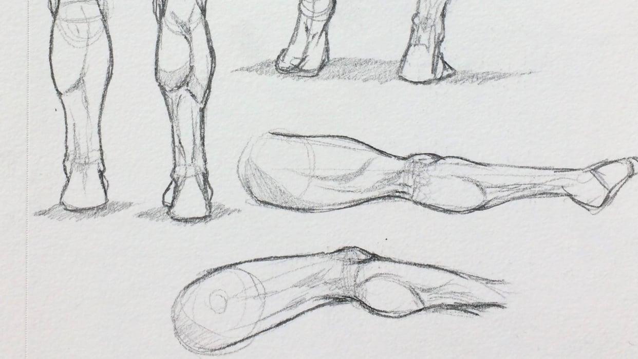 Figure Studies - student project