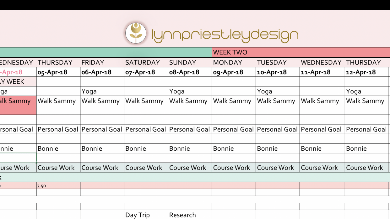A snippet of my multi paged spreadsheet... - student project