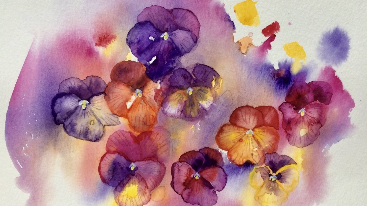 Watercolor pansies - student project