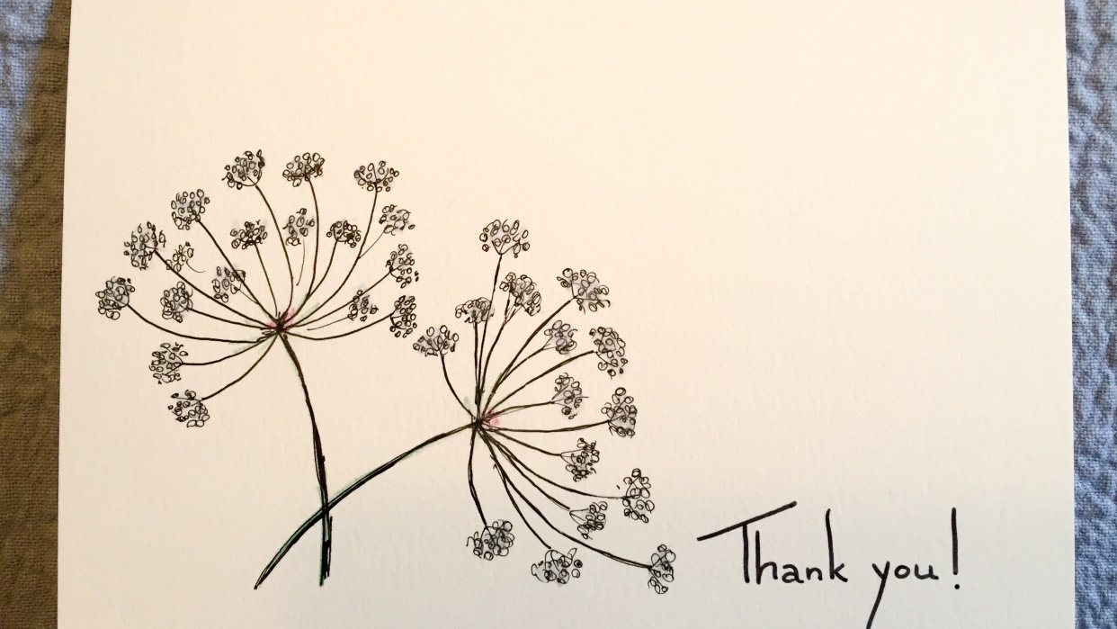Drawing Wildflowers on Greeting Cards - student project