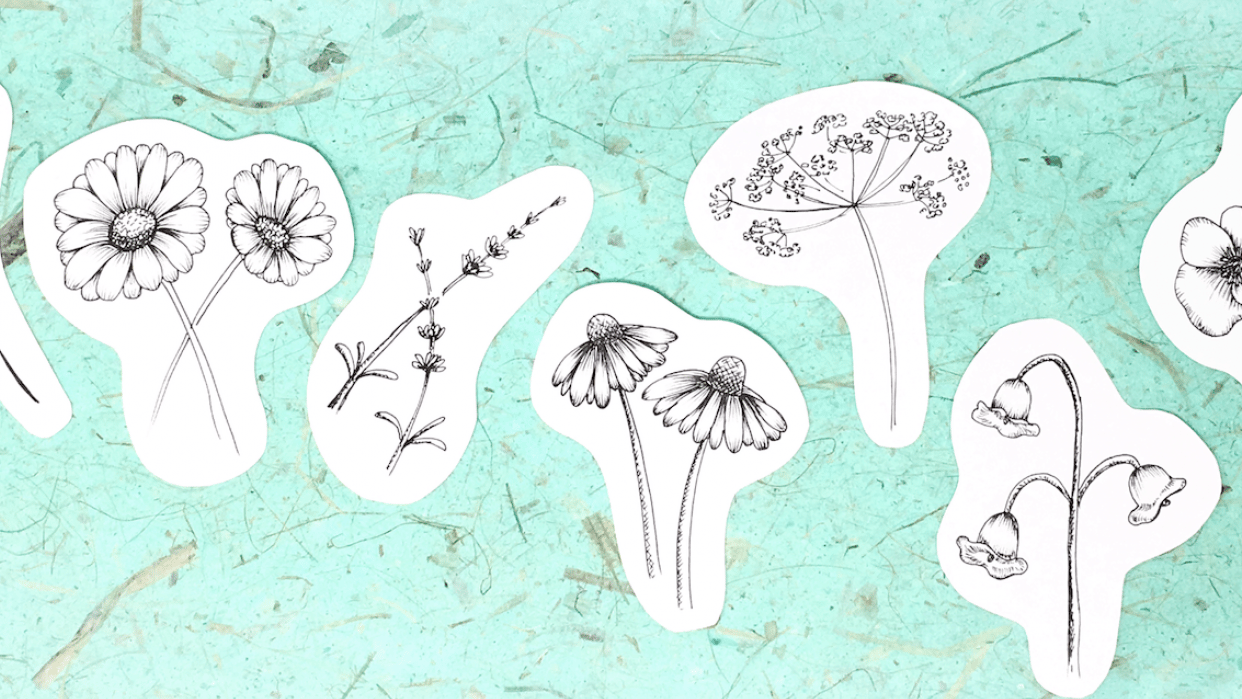 wildflowers in ink - student project