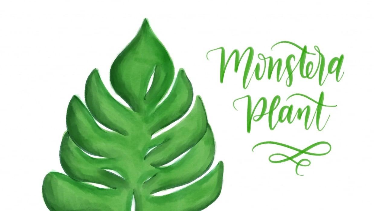 Digital Monstera Plant - student project