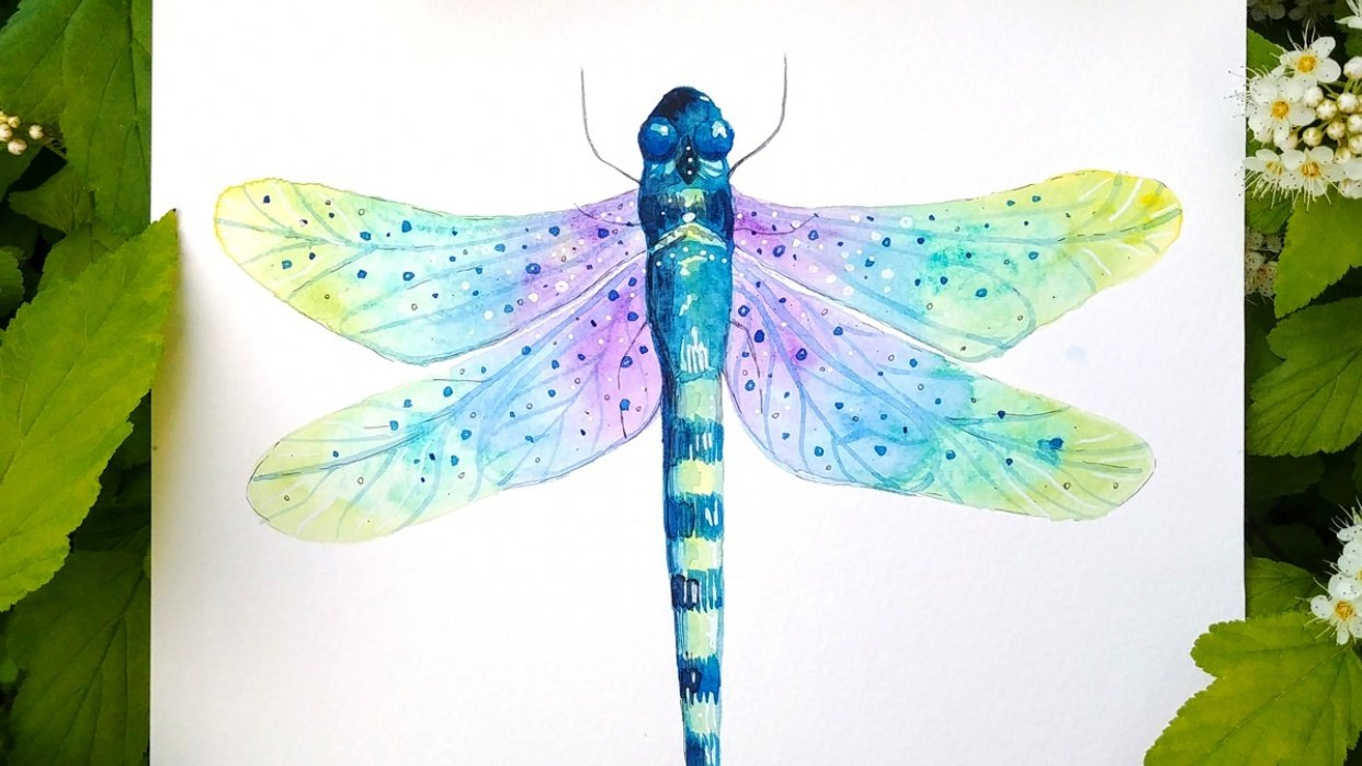 Magical dragonflies - student project
