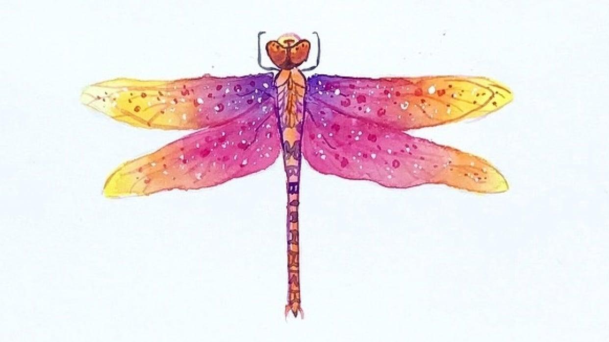Vibrant Magical Dragonflies - student project