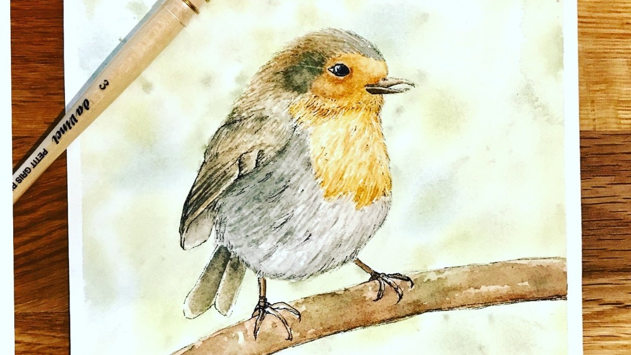 Basic Watercolor & Ink Illustration: Songbirds - student project