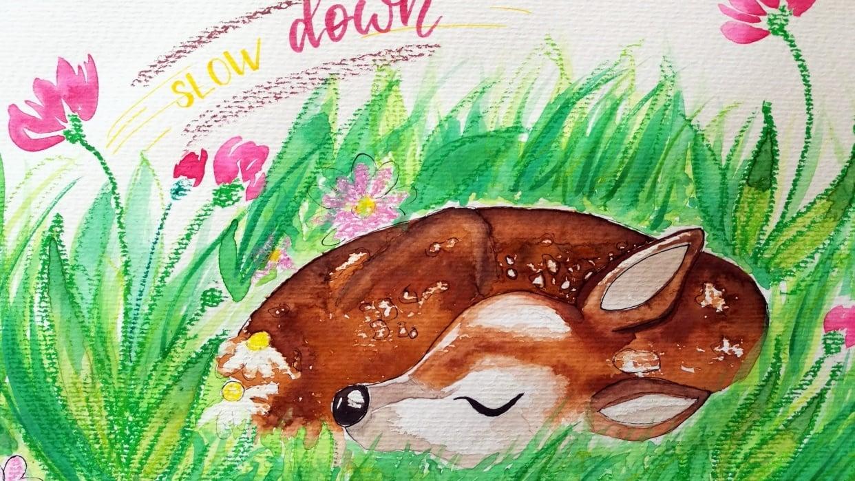 Deer - student project