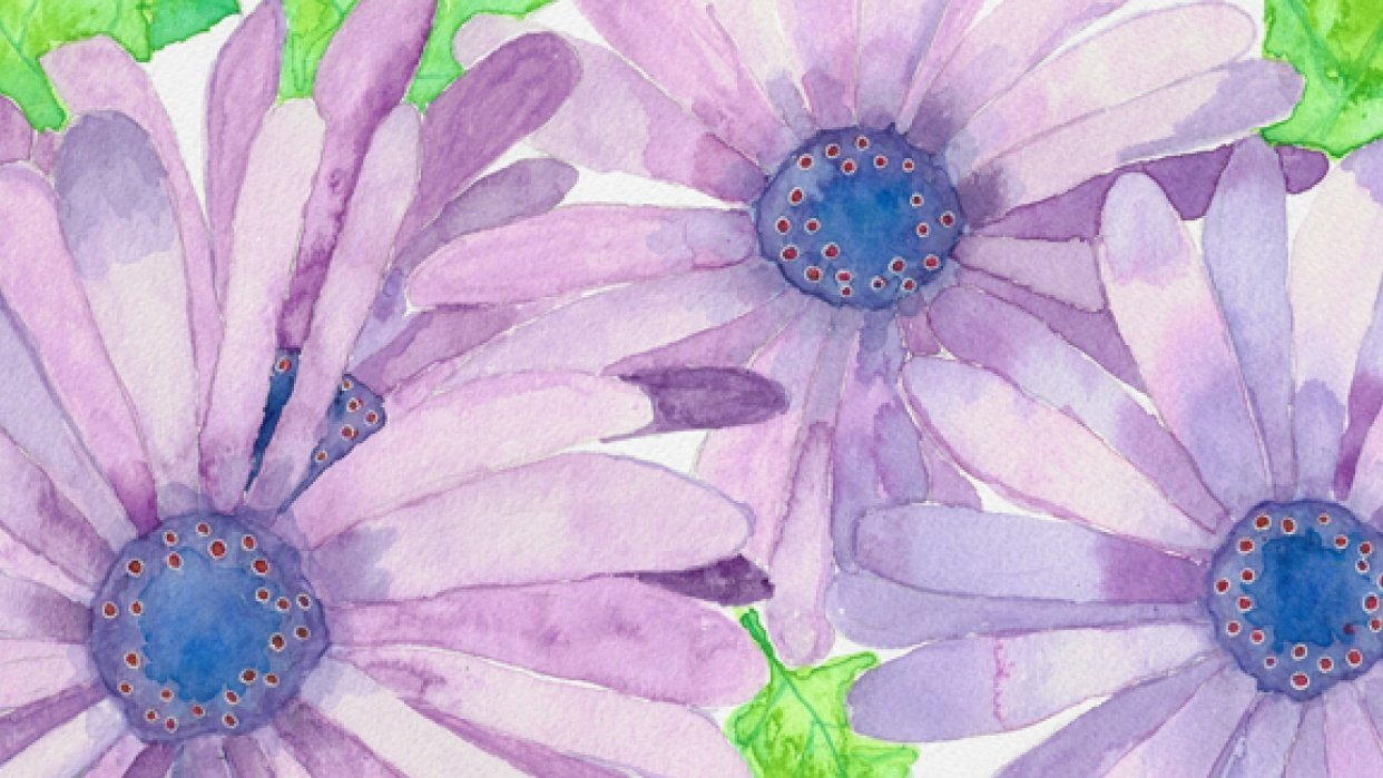 Purple Daisies - student project