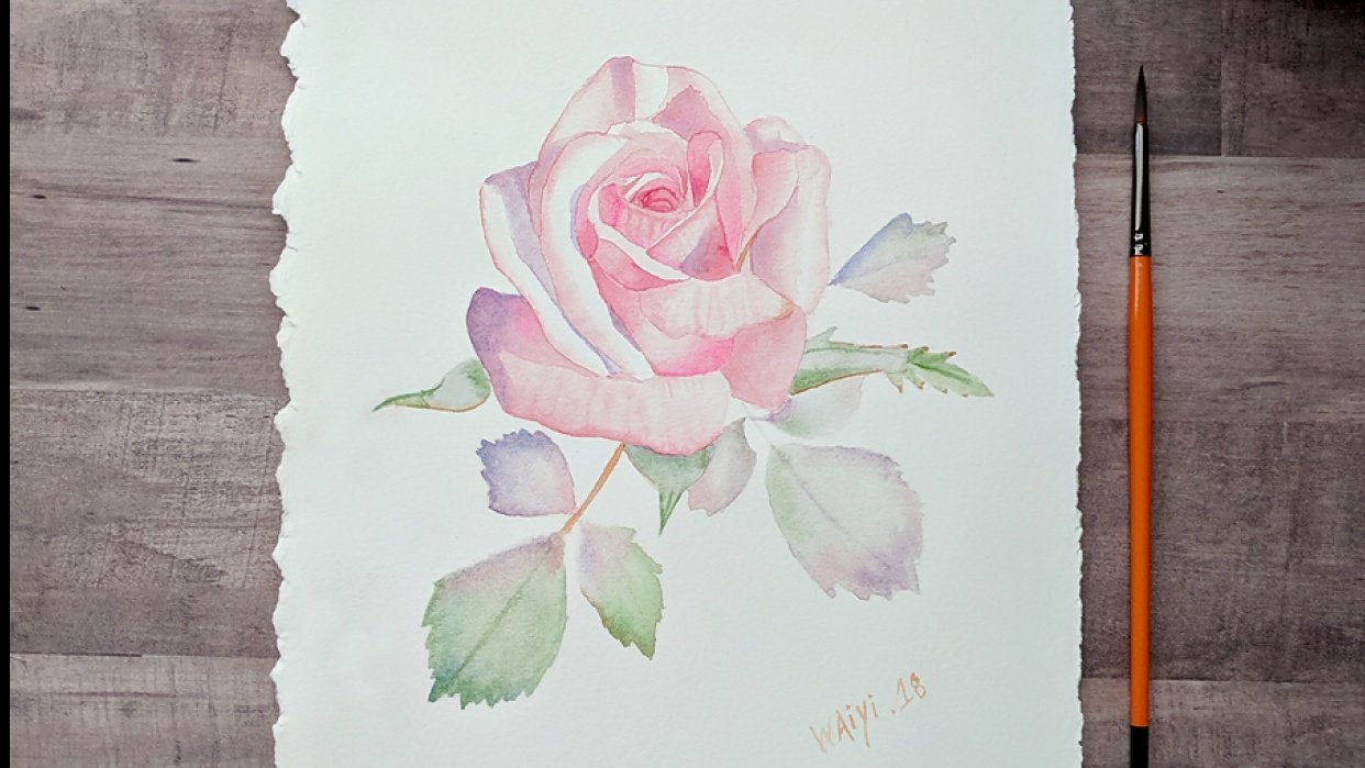 Watercolor Pink Rose Painting - student project