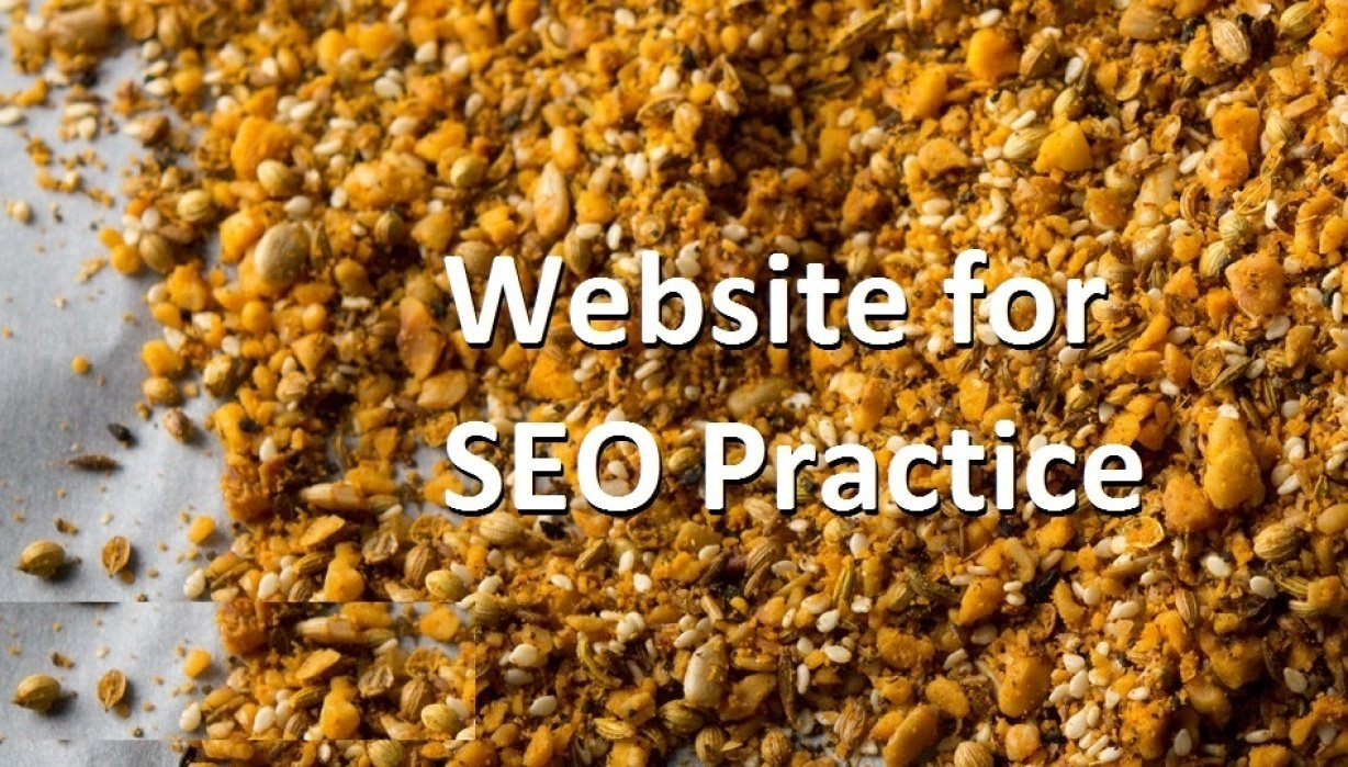 Build up websites for SEO practice - student project