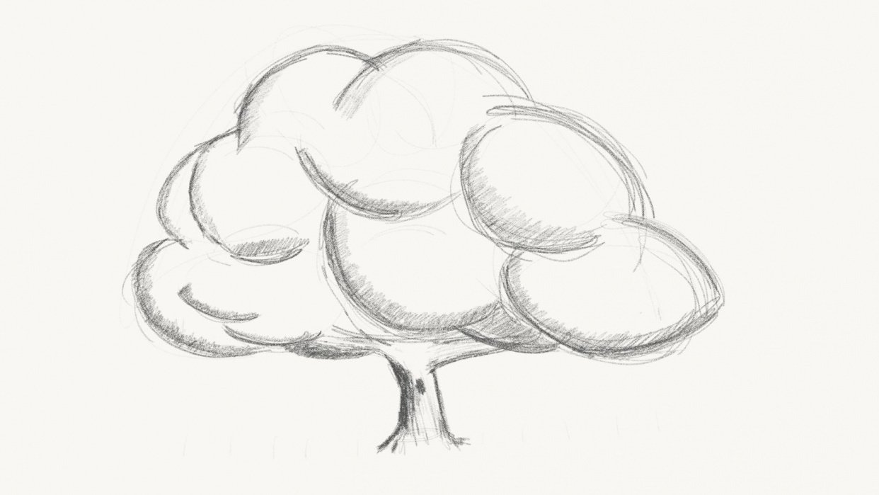 Sketching a tree - student project