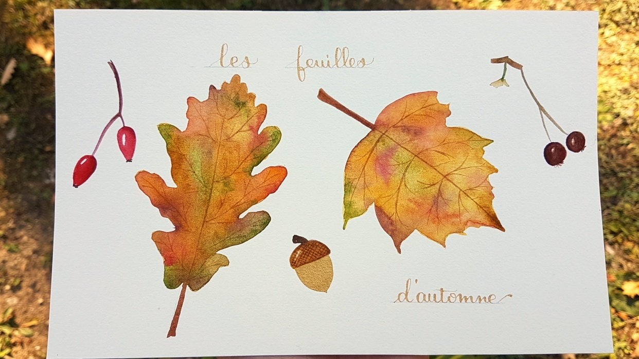 Autumn leaves and Pumpkins - student project