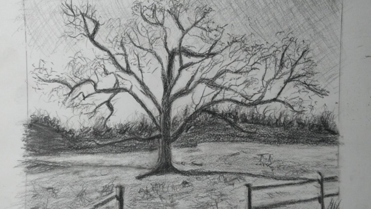 Tree. - student project