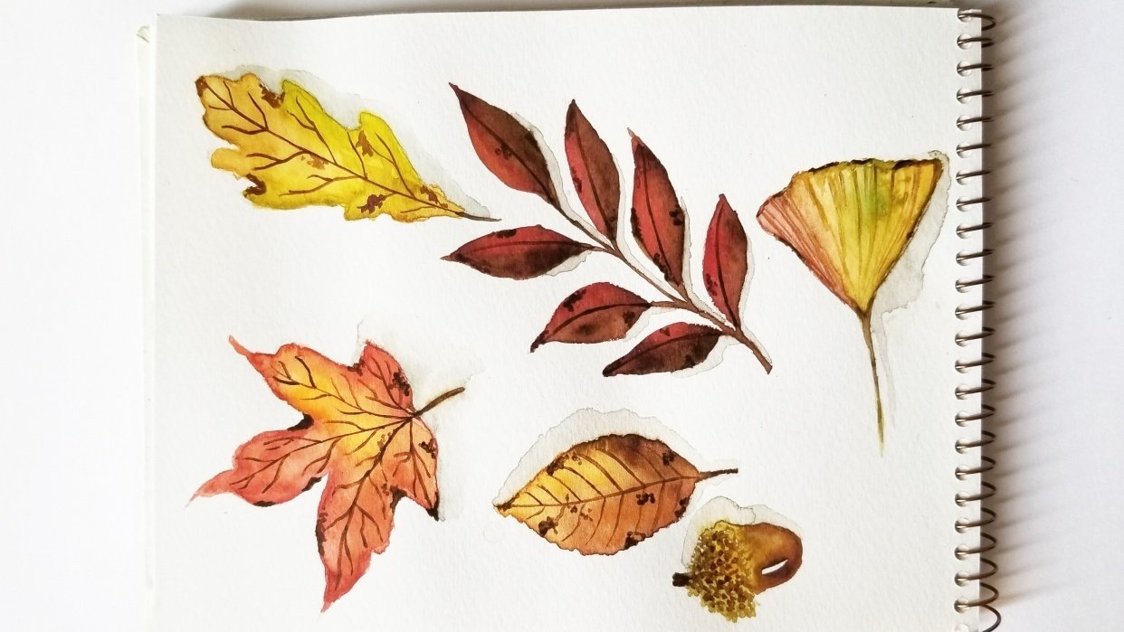 Had a blast painting these amazing leaves - student project