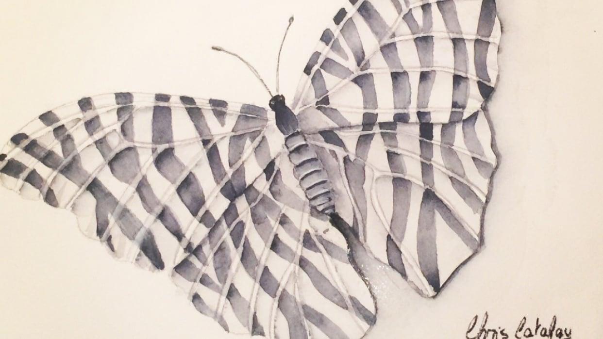 Zebra Butterfly - student project