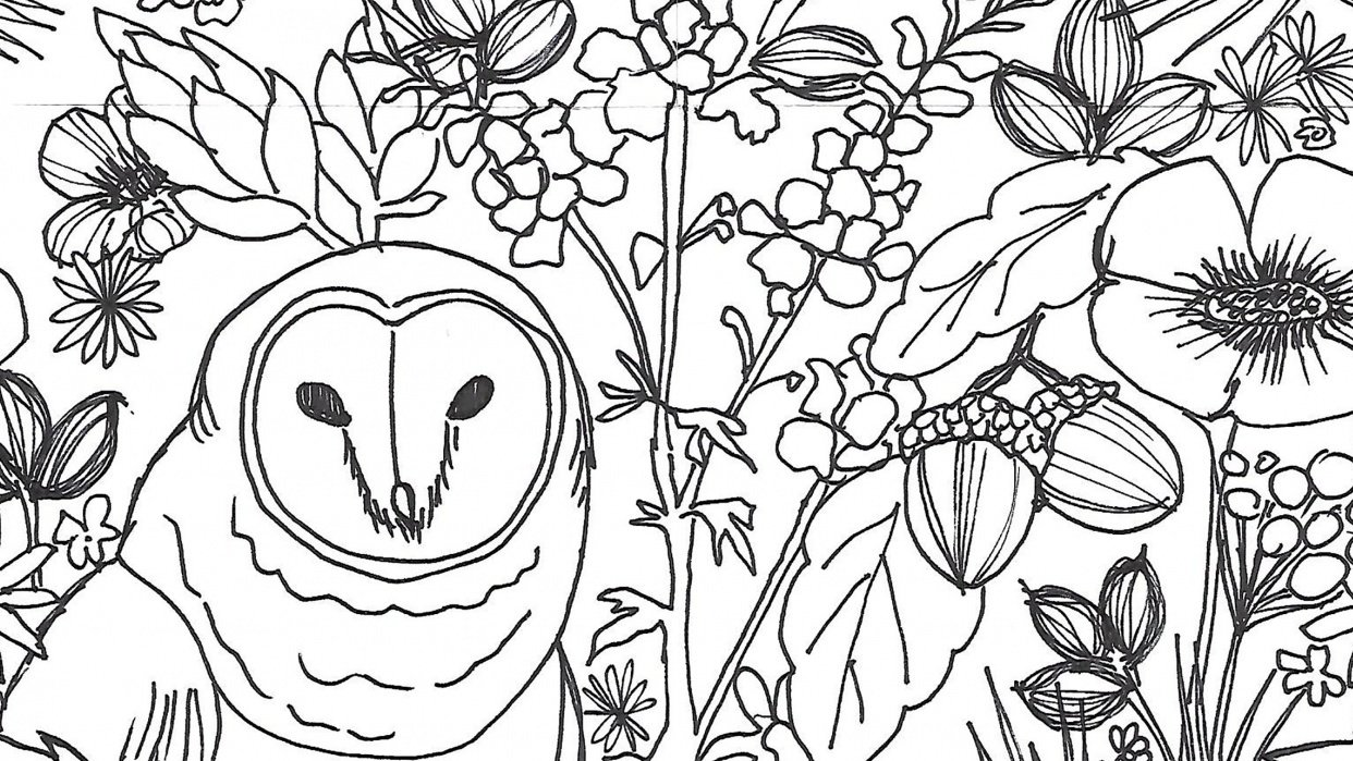 Owl Pattern - student project