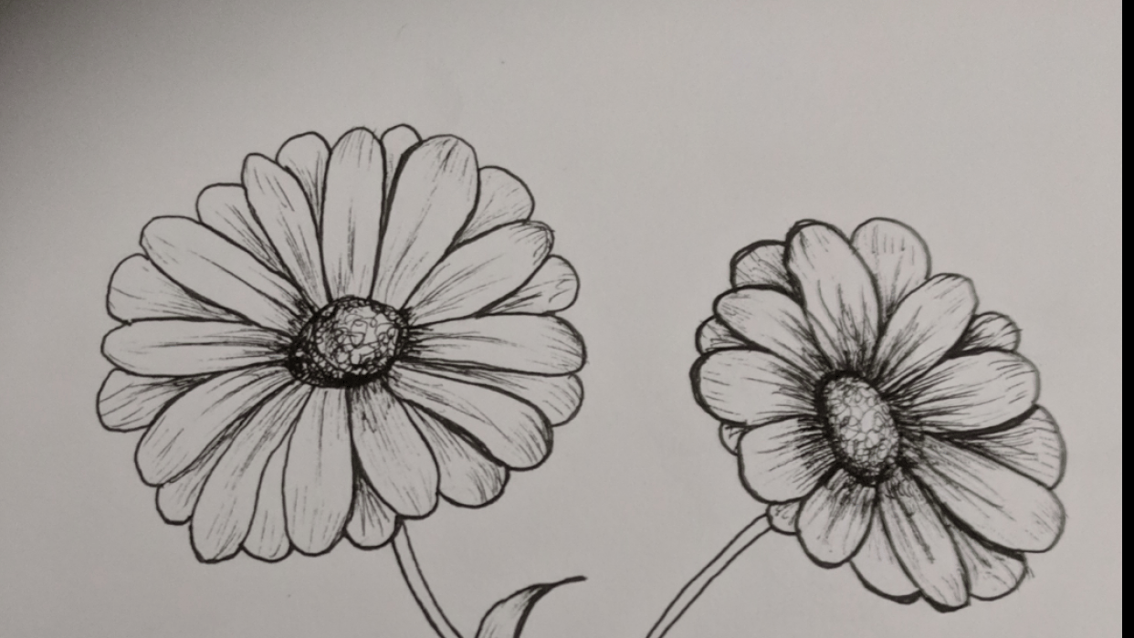Fun Flowers - student project