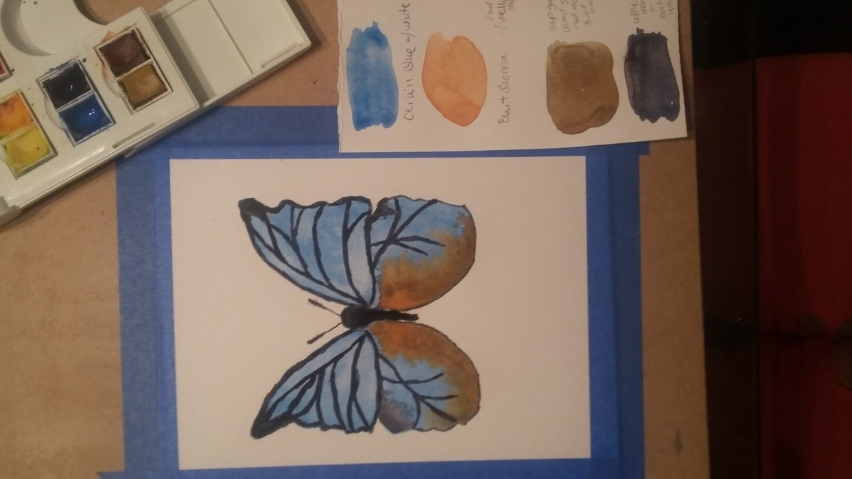 First watercolor butterfly - student project