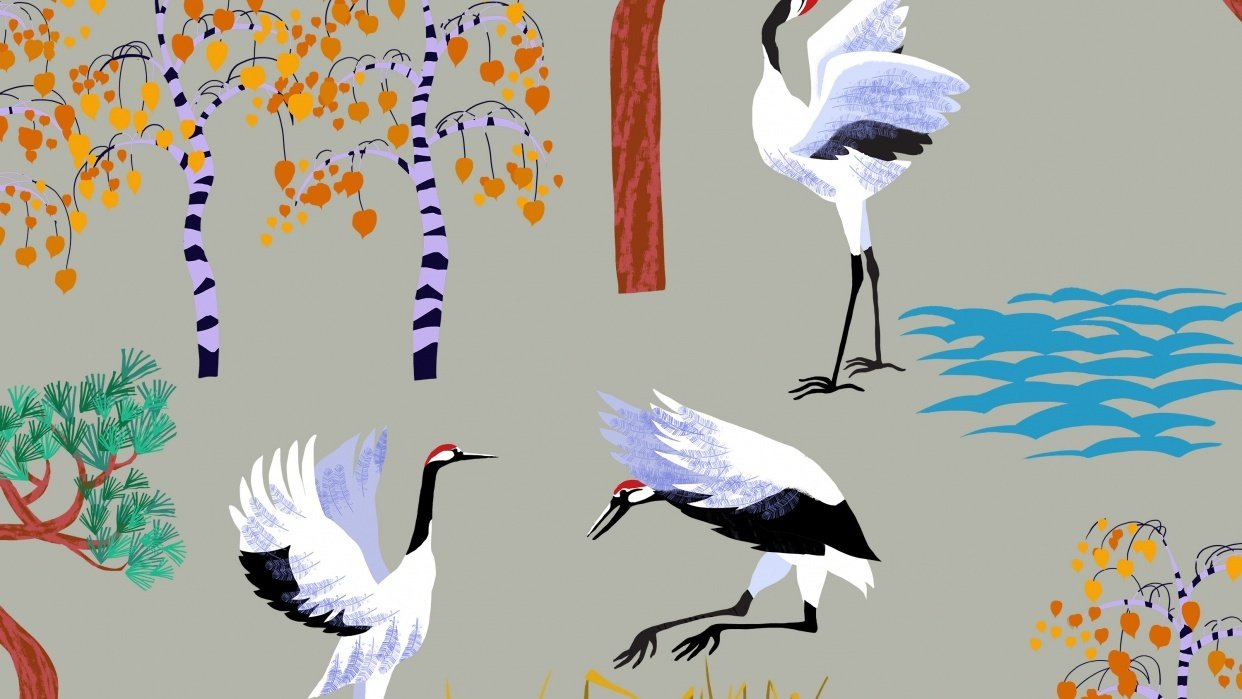 Red-headed Cranes - student project