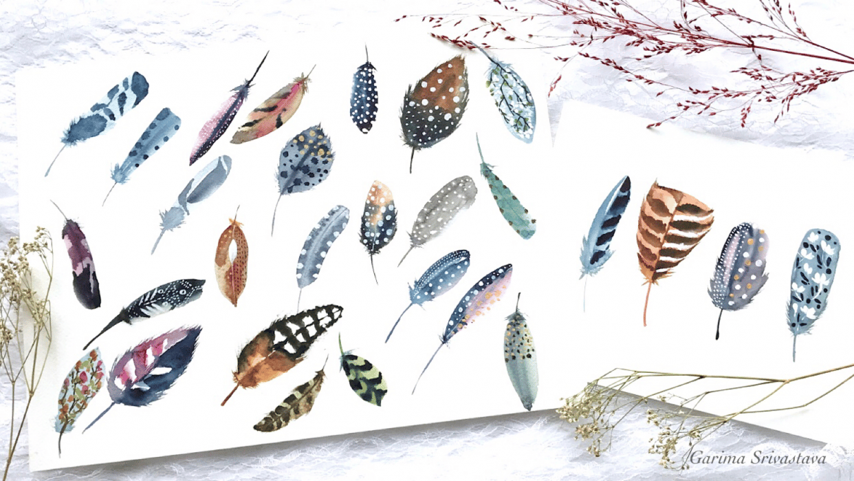 Decorative Watercolor Feathers: Class Project Reference - student project