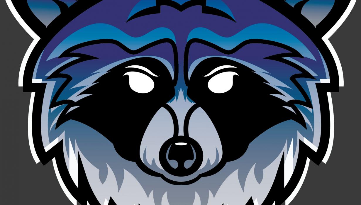 Raccoon Logo - student project
