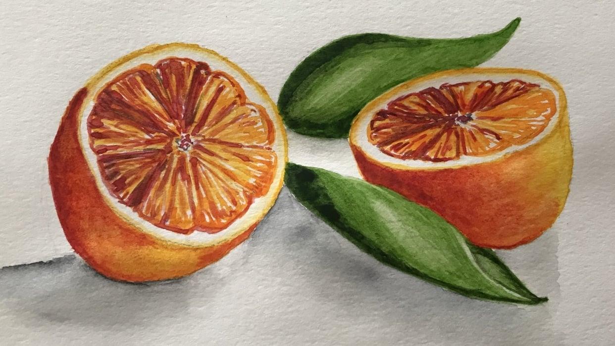 Citrus fruit - student project