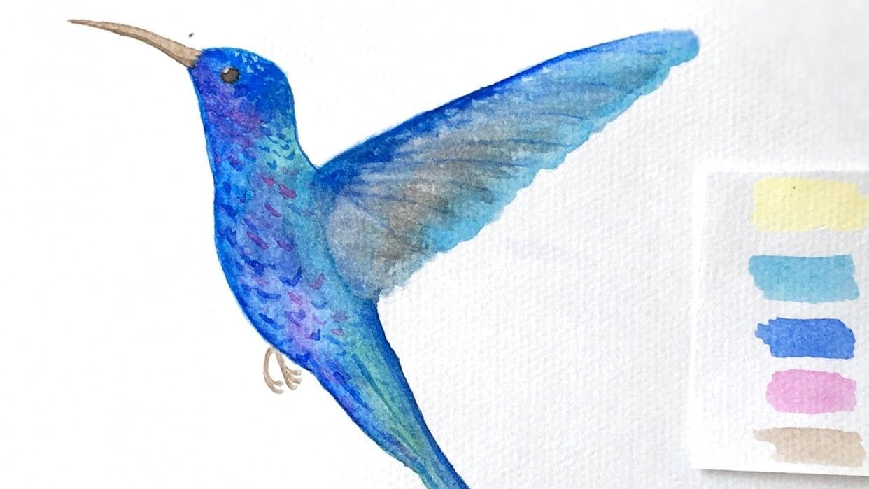 Watercolor Hummingbird - student project