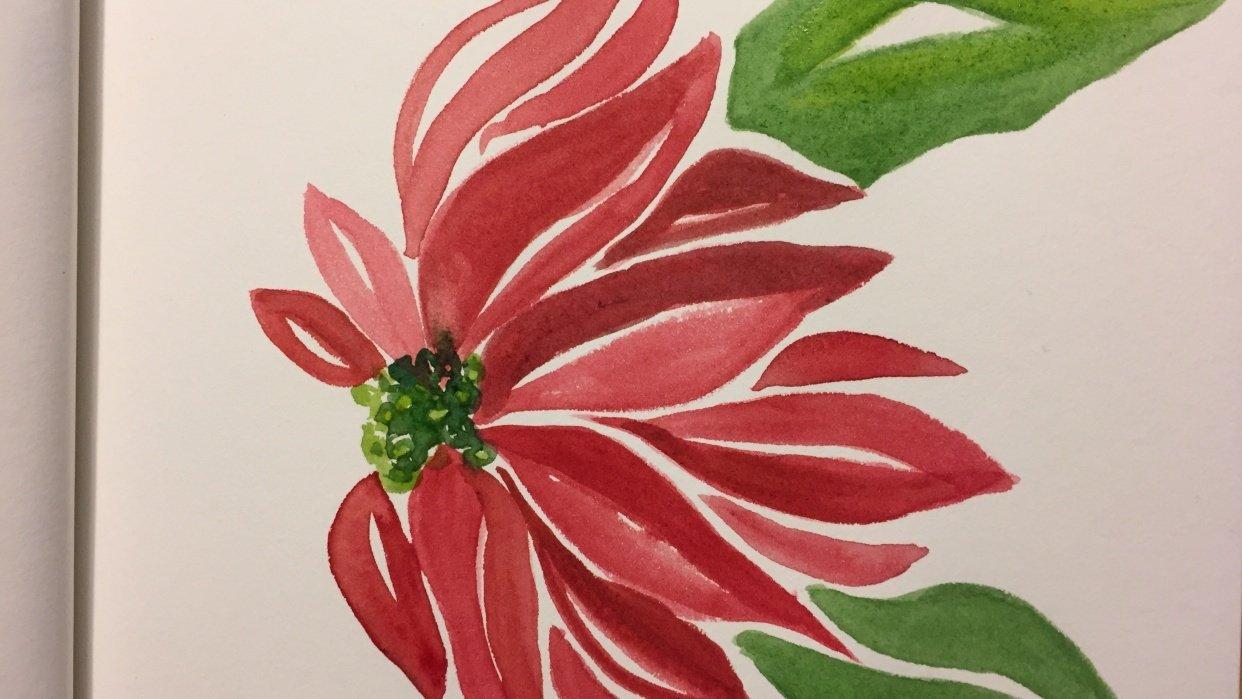 Poinsettia - student project
