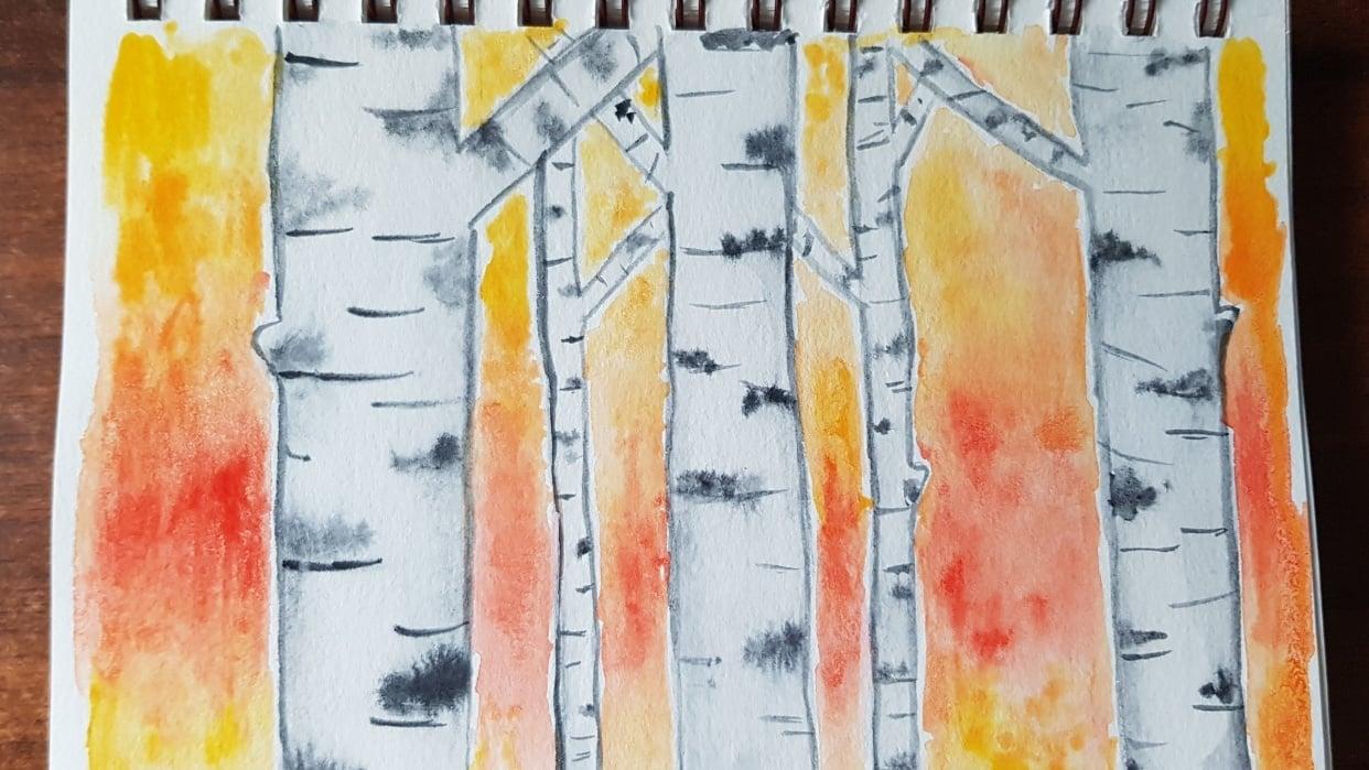 Aspen Trees - student project