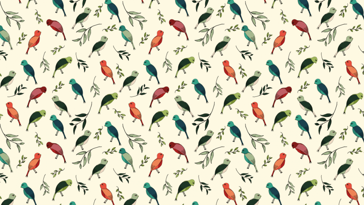 Colorful birds - student project