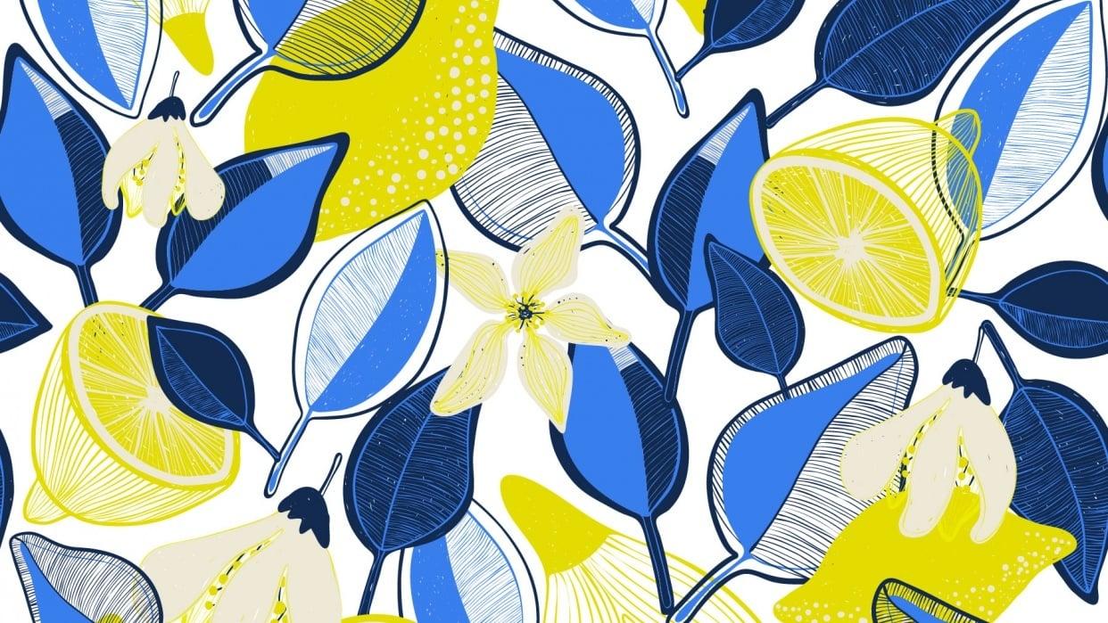 Lemons - student project