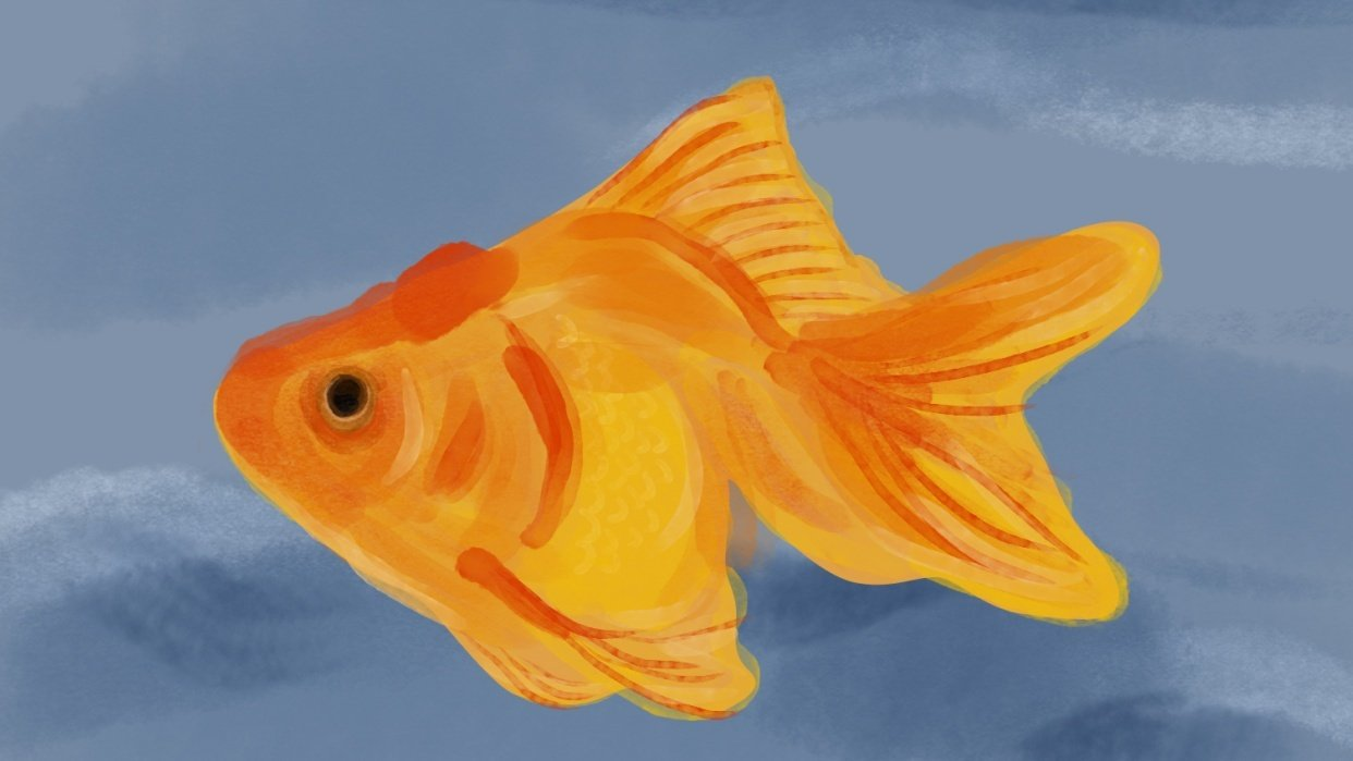 Goldfish - student project