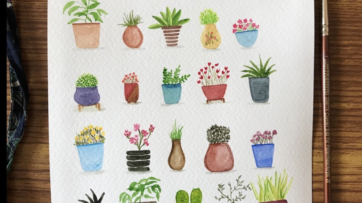 Potted plants - student project