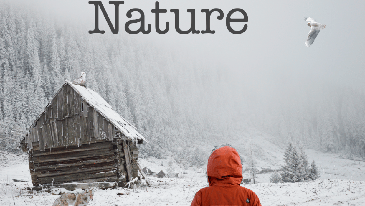 Nature - student project